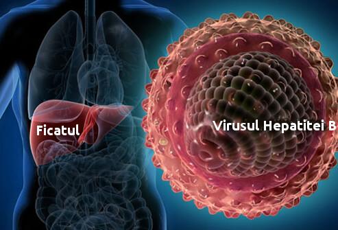 Hepatita B și vaccinarea împotriva bolii