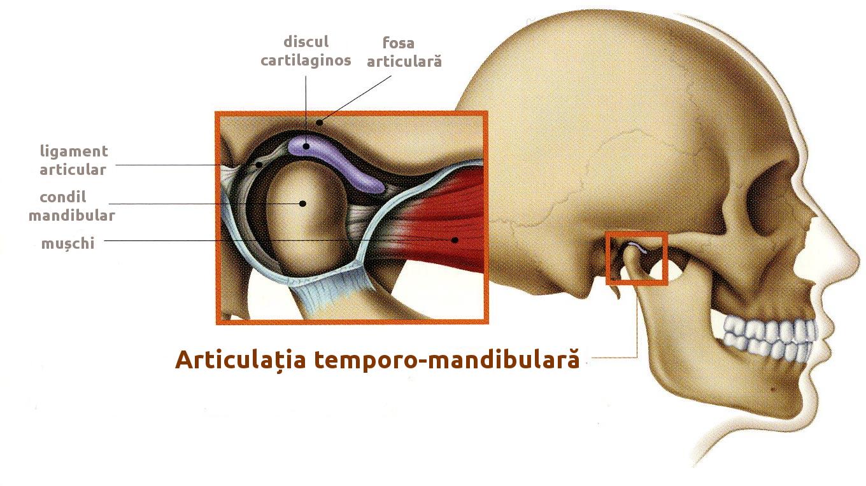 Disfuncția articulației temporomandibulare (ATM) – Cauze și simptome